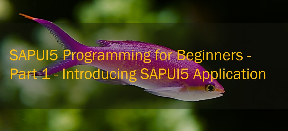 sapui5 programming for beginners sapui5 application